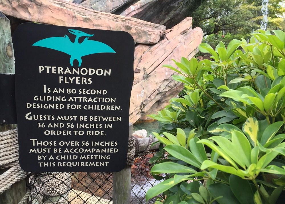 Pteranodon Flyers Ride Information