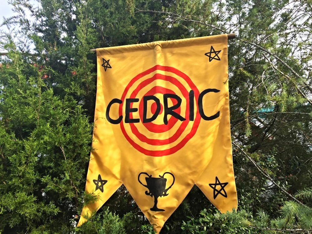 Cedric Diggory Banner in Dragon Challenge Queue