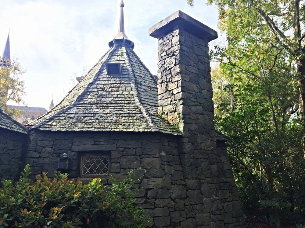 Hagrid's Hut in Dragon Challenge Queue