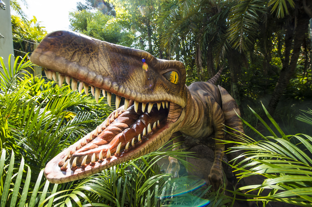 Raptor Encounter in Jurassic Park. Image credit: Universal Orlando Resort.
