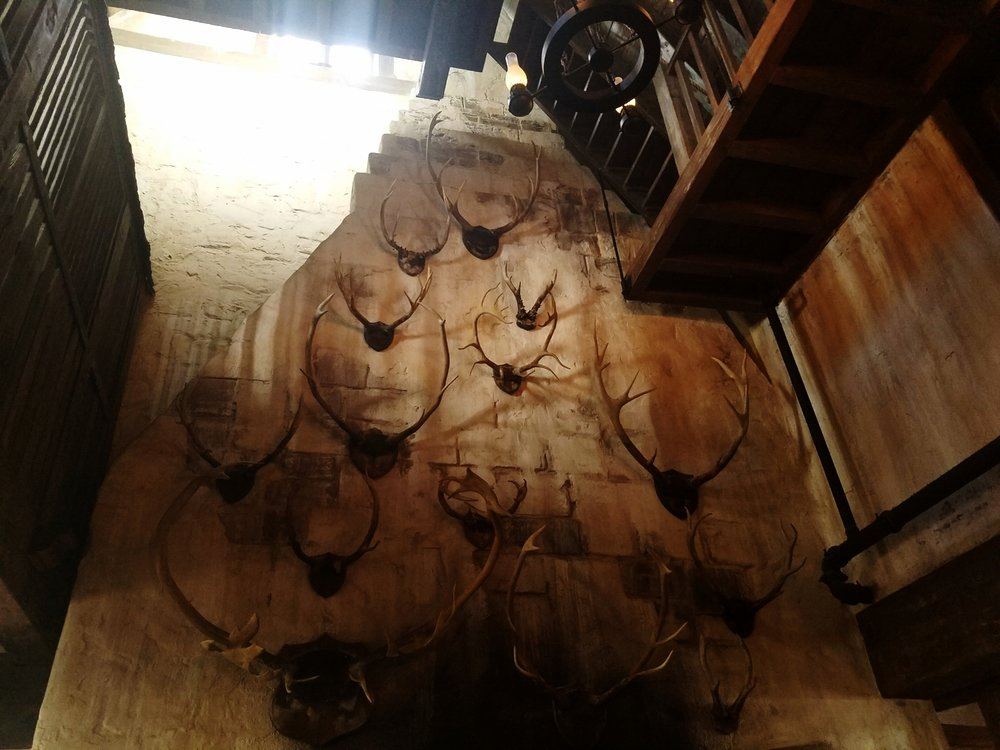 Antlers Decorate the Wall at the Three Broomsticks