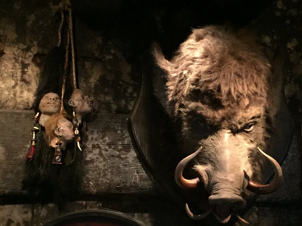 Hog's Head and Shrunken Heads Displayed at the Hog's Head Bar