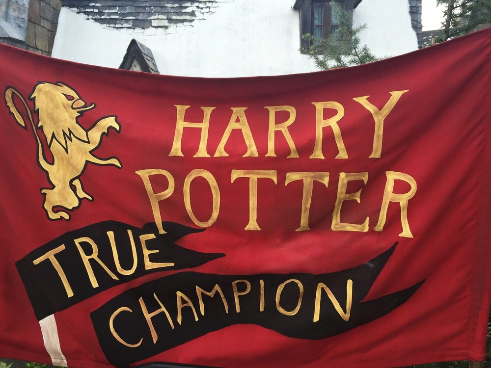 The queue for Dragon Challenge features banners for each Triwizard Champion.
