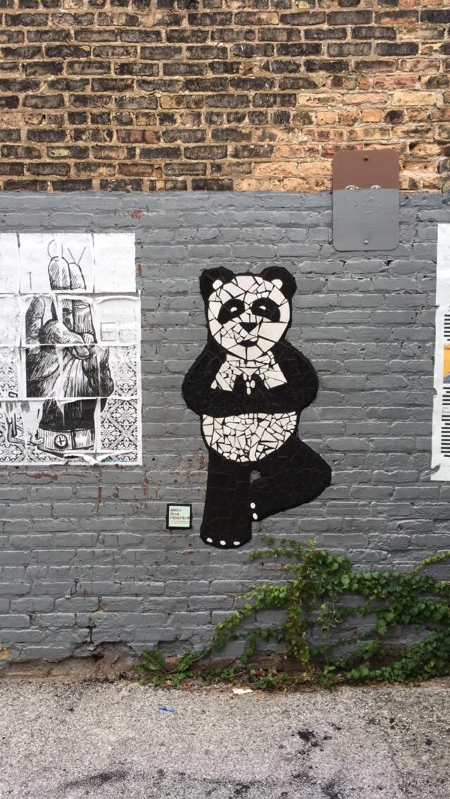 panda yoga 2.jpg