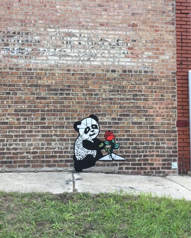 panda rose 2.jpg