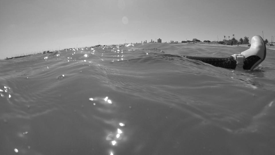 sea leg.jpg