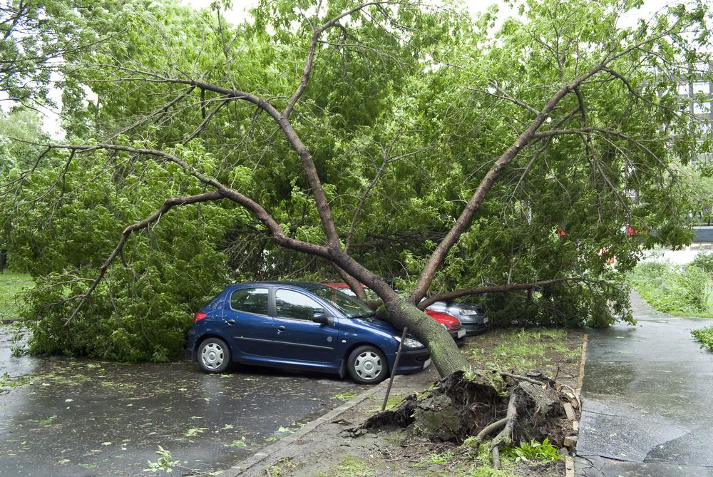 auto-insurance2.jpg