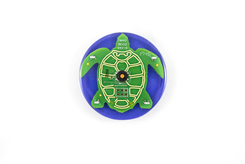 Two Minute Turtle Timer, Purple