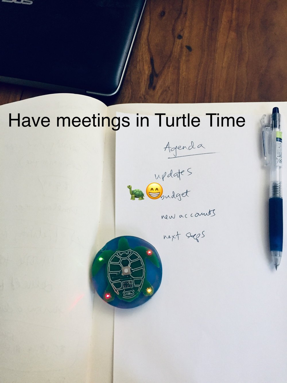 The Two Minute Turtle Timer keeps our meetings on task! - Dr. Michelle Ephraim, MA