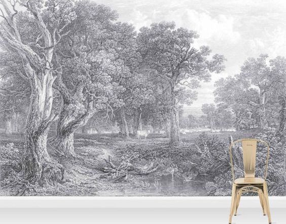 Holy cow Wall Mural, etched, charcoal, vintage, feature, statement, trees, 1 roll,paste the wall , landscape, forest , vintage