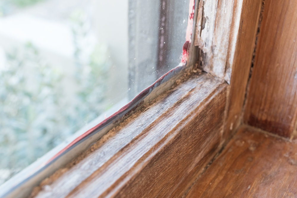 woodwork damage-0226.jpg