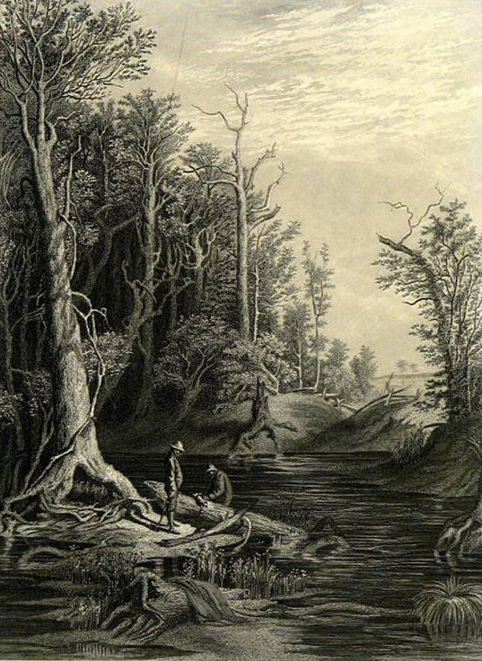 1873 The Chickahominhy by W.L. Sheppard Vintage Steel Engraved Print Picturesque America Original Landscape Illustration
