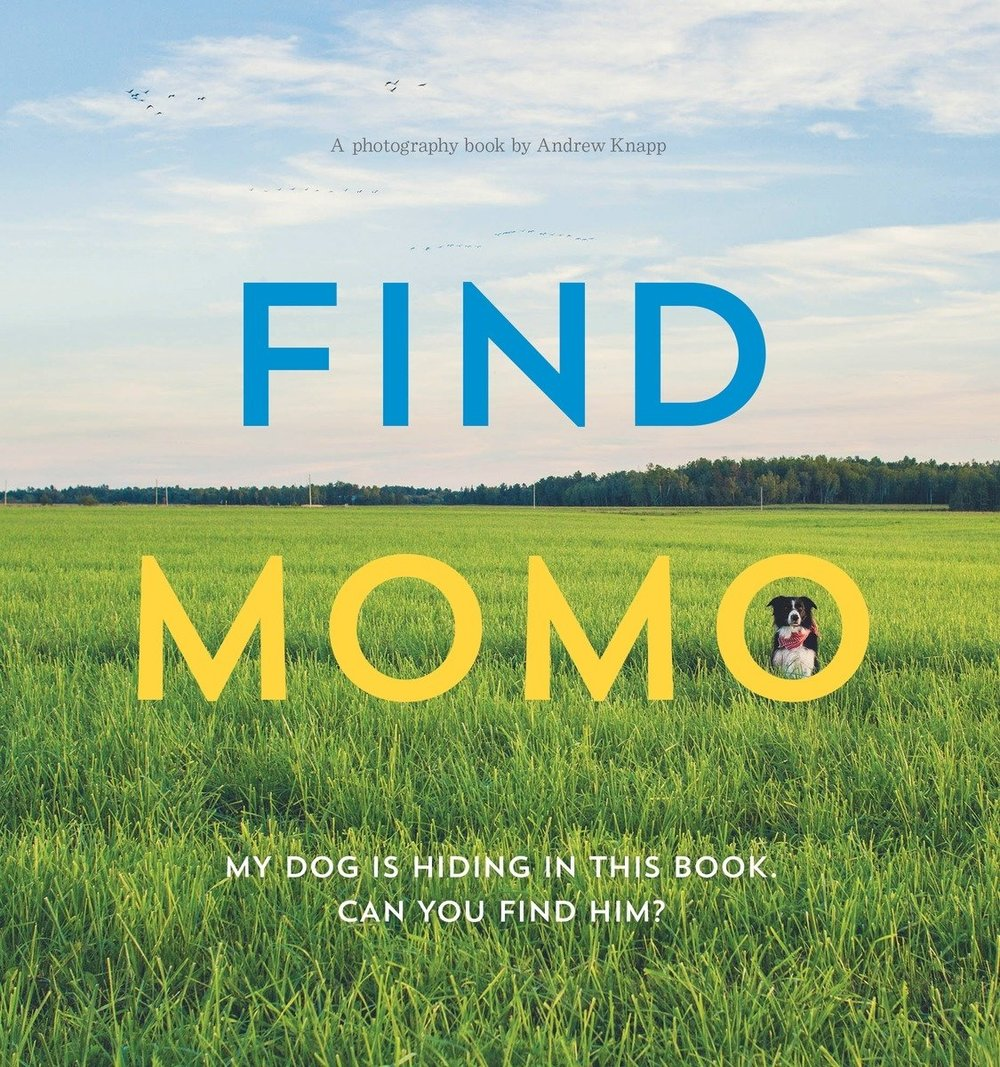 Copy of Find Momo