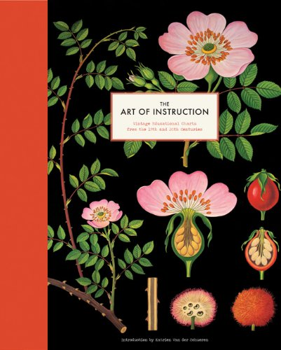 Copy of The Art of Instruction