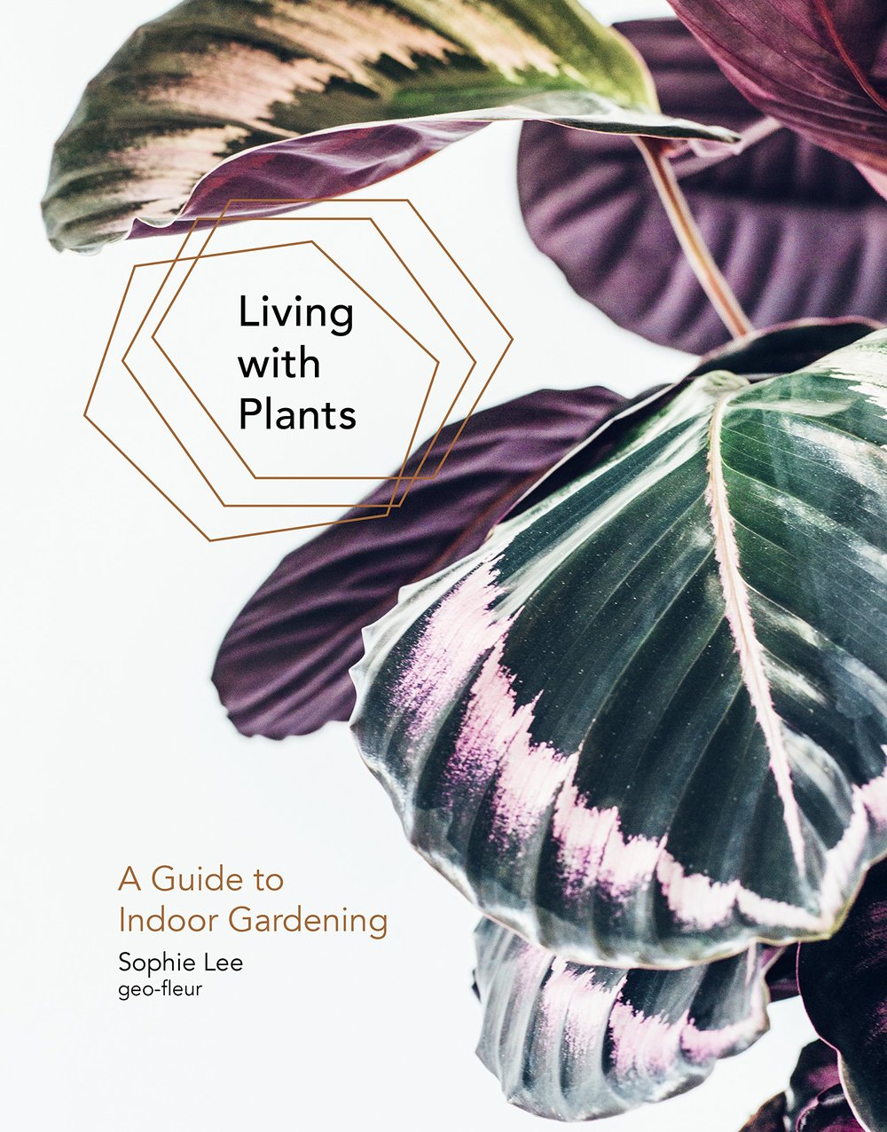 Copy of Living with Plants