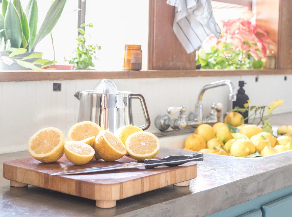 lemons2-0090.jpg