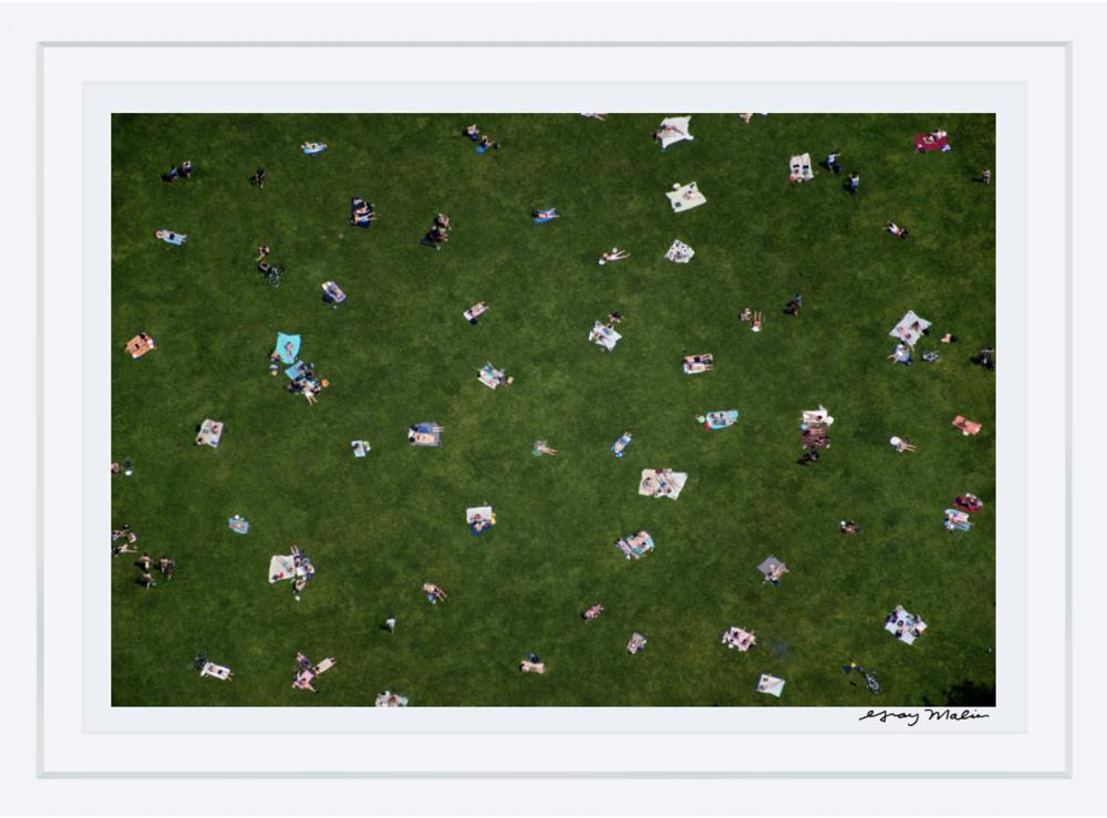 Central Park Lawn Au Parc Gray Malin