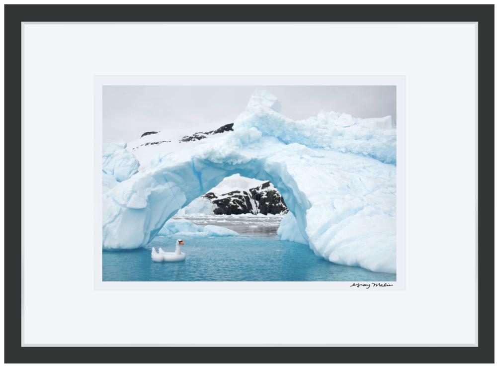 Swan Ice Bridge Antarctica: The White Continent Gray Malin