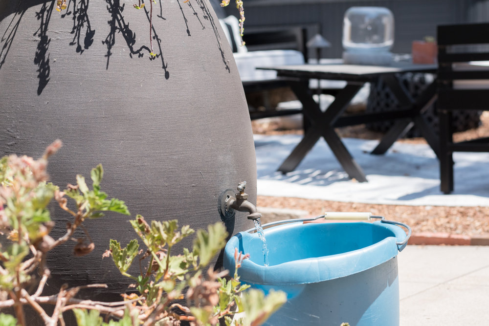 Rainbarrel harvest recycled grey water from air conditioner-0053.jpg