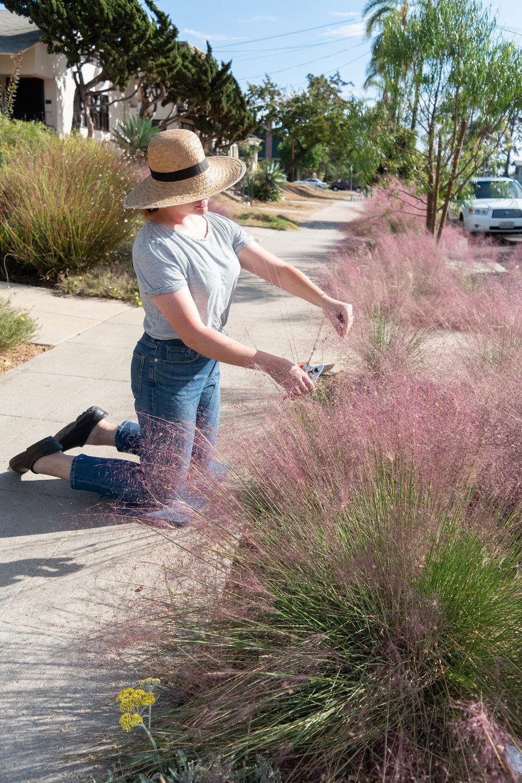 Fall Gardening in San Diego Favorite Tools.jpg