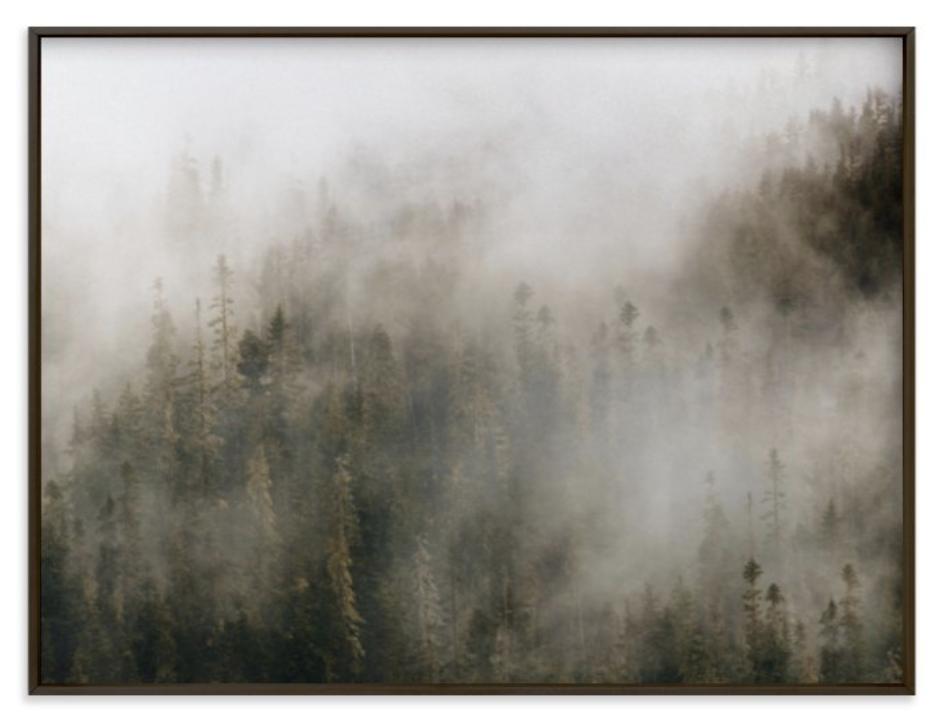 pacific north fog