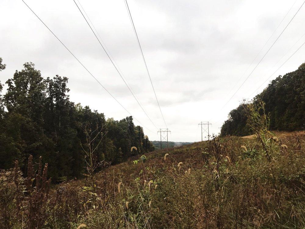 hike_two-mastodon-state-historic-site0354.JPG