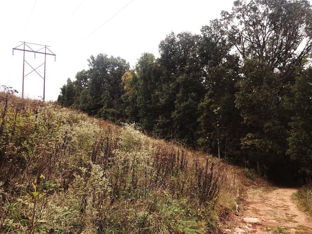 hike_two-mastodon-state-historic-site0356.JPG