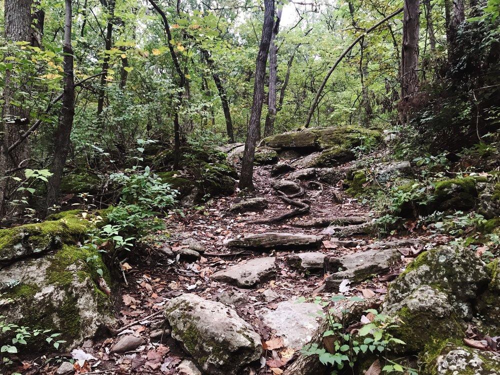hike_two-mastodon-state-historic-site0359.JPG