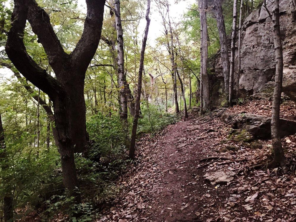 hike_two-mastodon-state-historic-site0364.JPG