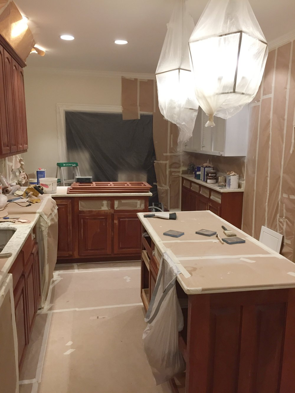 Kitchen Reno Mess.JPG