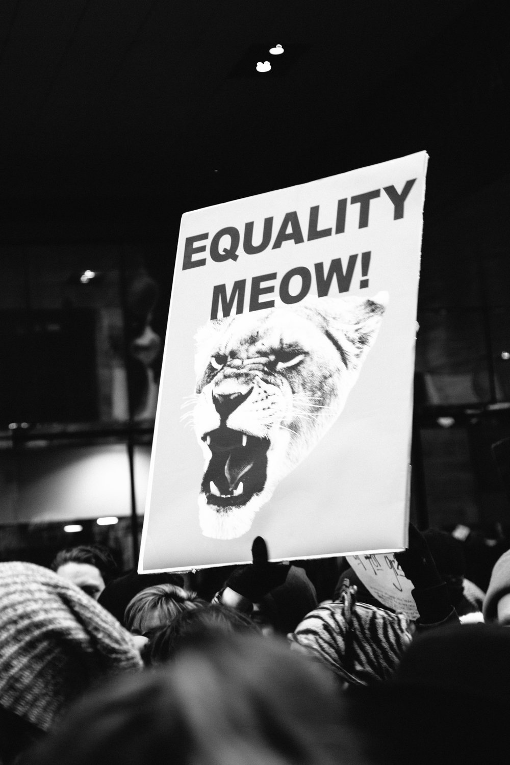 women's march on washington nyc protest signs-109.jpg