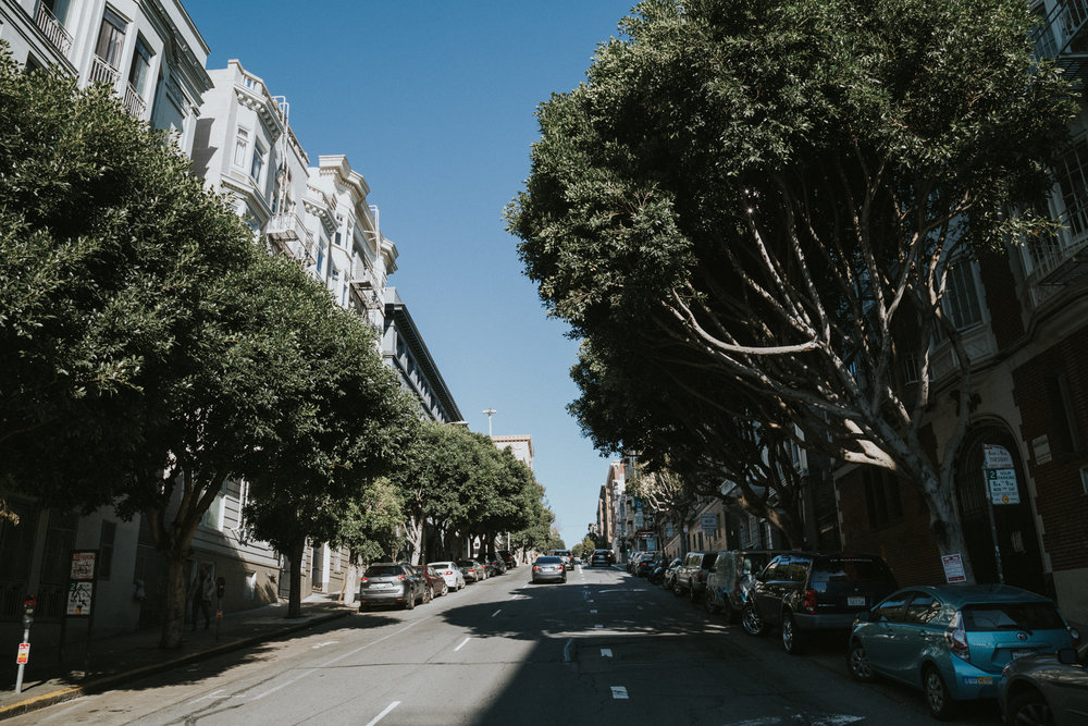 sf california best things to do in san francisco travel guide photos photographer wanderlust-1