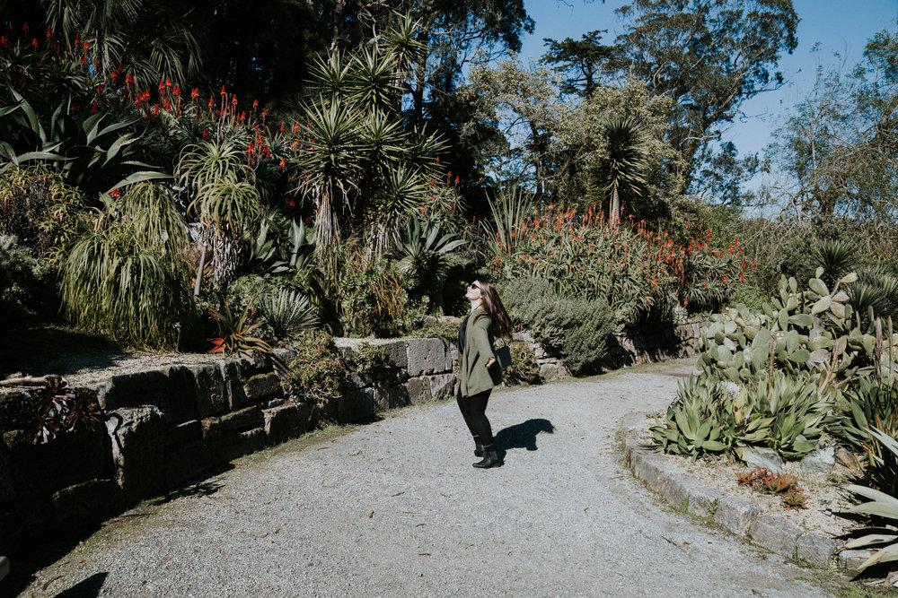 sf california san francisco travel photos botanical garden flower nature tribe archipelago redwood tree photographer succulent cactus wanderlust -14