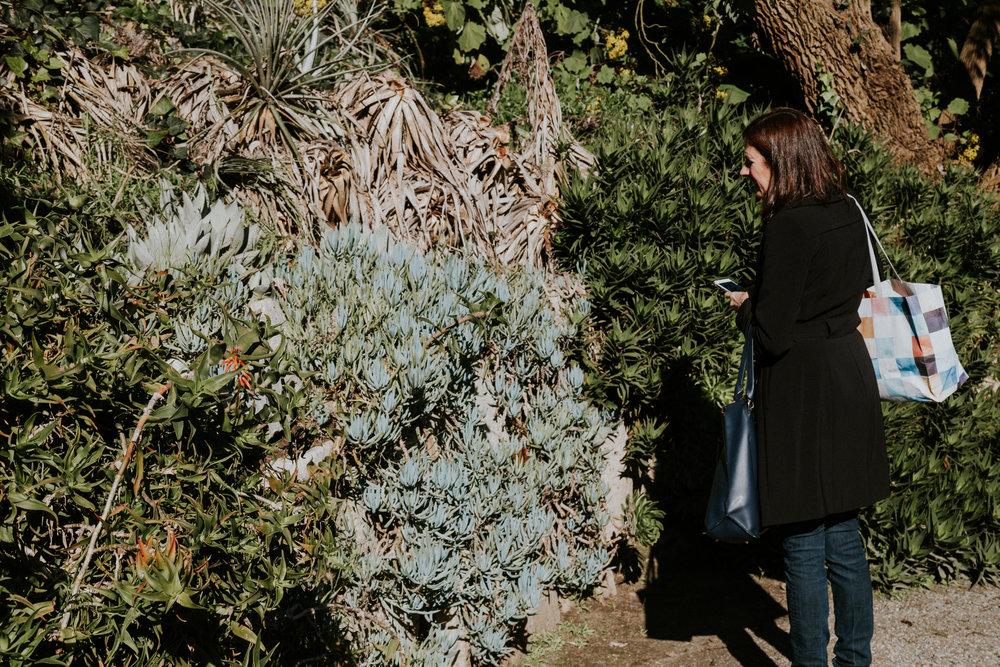 sf california san francisco travel photos botanical garden flower nature tribe archipelago redwood tree photographer succulent cactus wanderlust -15