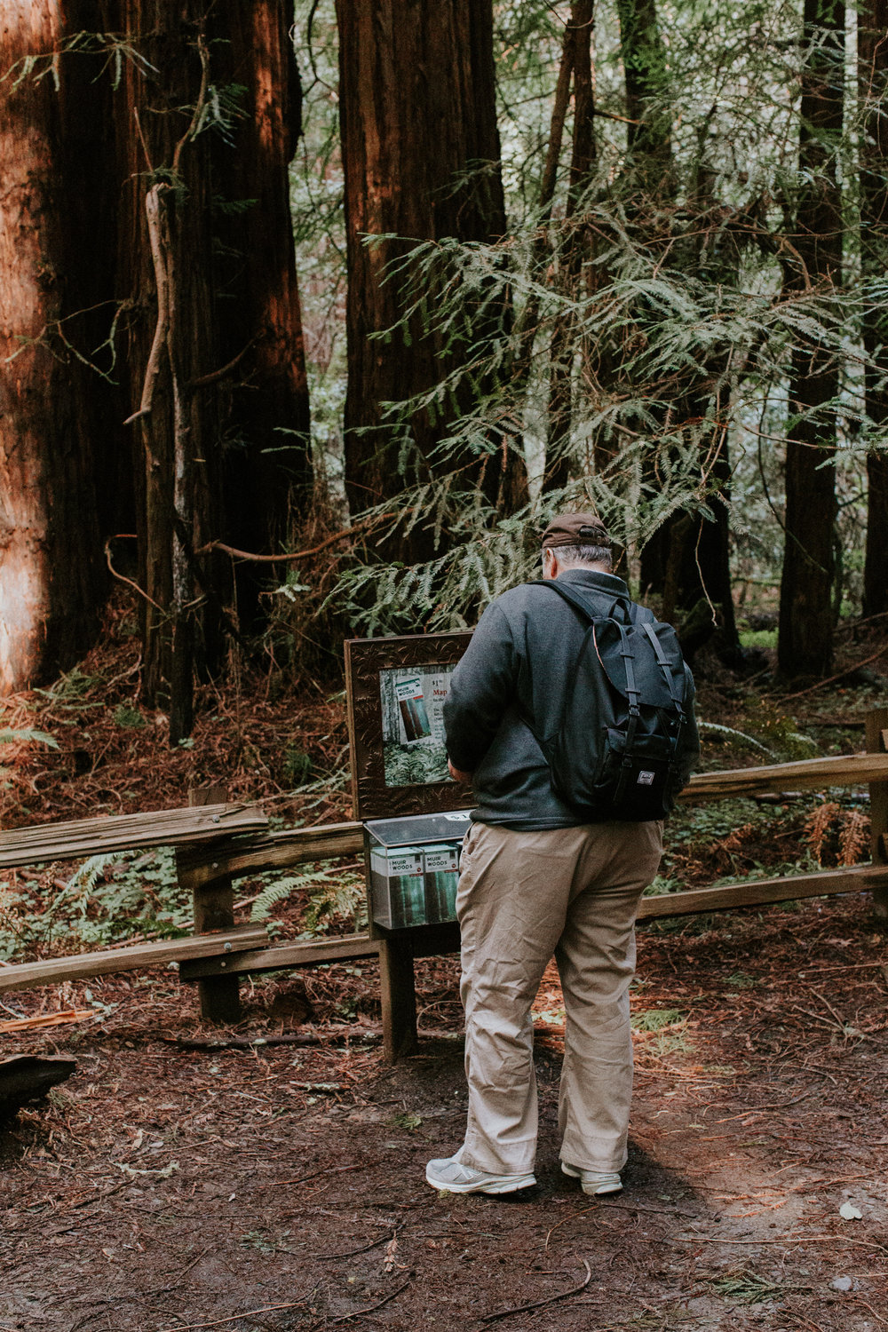 Redwood Muir Woods San Francisco California Travel Hike nature wanderlust CA SF best things to do in northern cali map