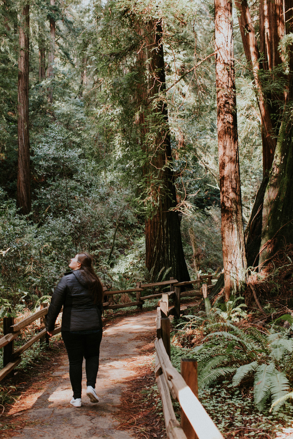 Redwood Muir Woods San Francisco California Travel Hike nature wanderlust CA SF best things to do in northern cali map trail adventure photographer photography 2