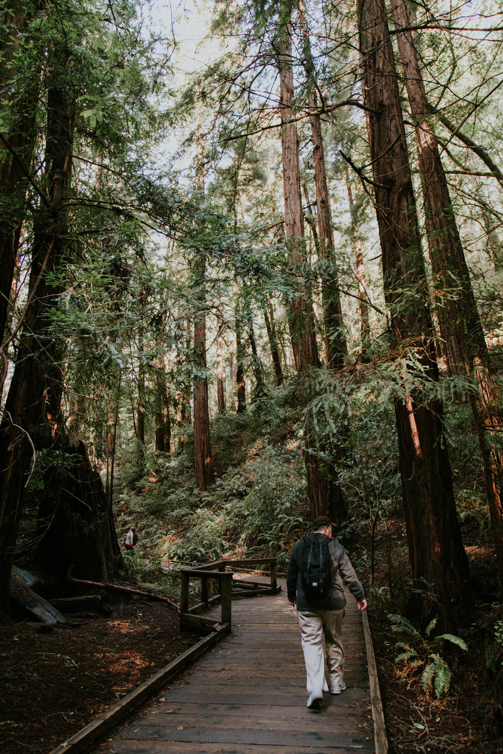 Redwood Muir Woods San Francisco California Travel Hike nature wanderlust CA SF best things to do in northern cali map trail adventure photographer photography 9