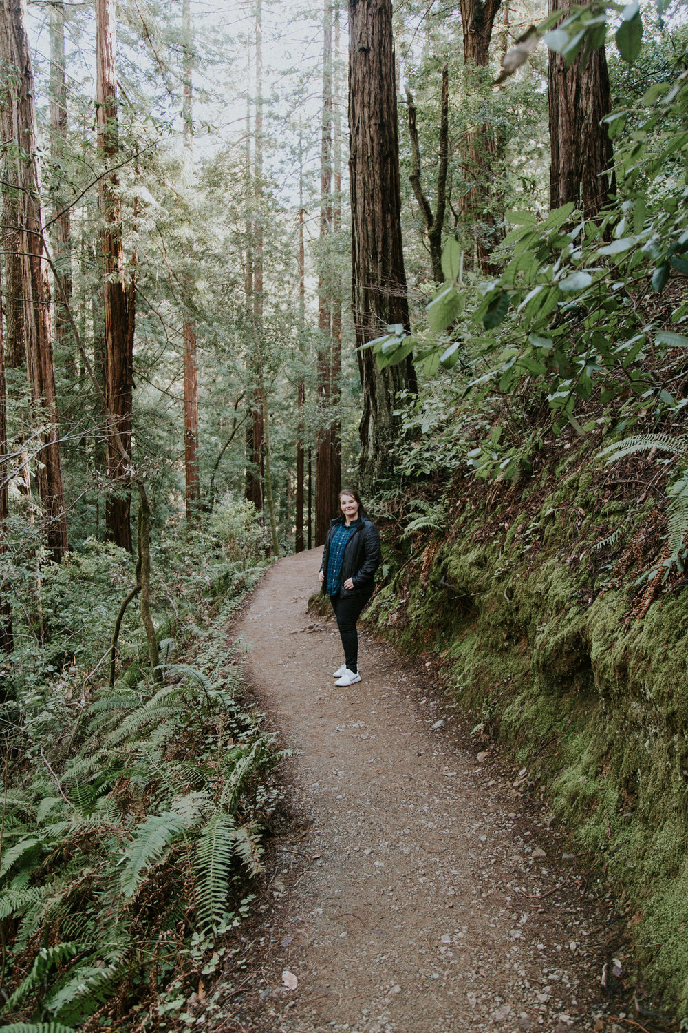Redwood Muir Woods San Francisco California Travel Hike nature wanderlust CA SF best things to do in northern cali map trail adventure photographer photography rachel Hanon moss path