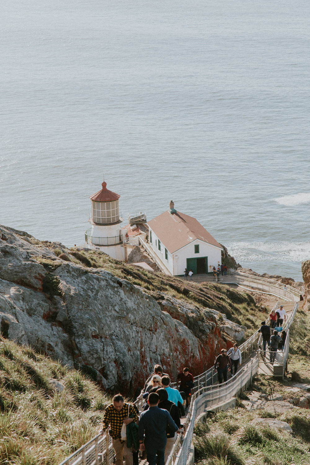 Point Reyes National Seashore pacific ocean overlook lighthouse elephant seal whale San Francisco California Travel Hike nature wanderlust CA SF best things to do in northern cali map trail adventure photographer photography road trip 6