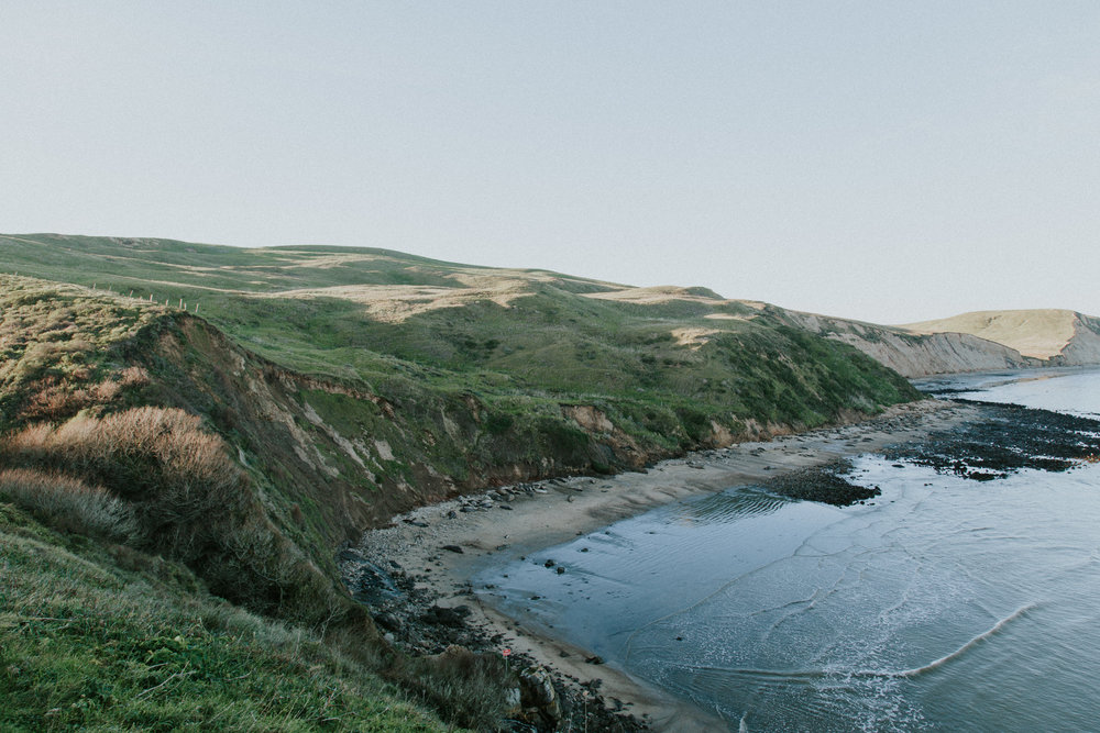 Point Reyes National Seashore pacific ocean overlook lighthouse elephant seal whale San Francisco California Travel Hike nature wanderlust CA SF best things to do in northern cali map trail adventure photographer photography road trip vista gorgeous 4