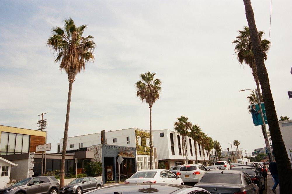 35 mm Los Angeles California Rachel Hanon Photography