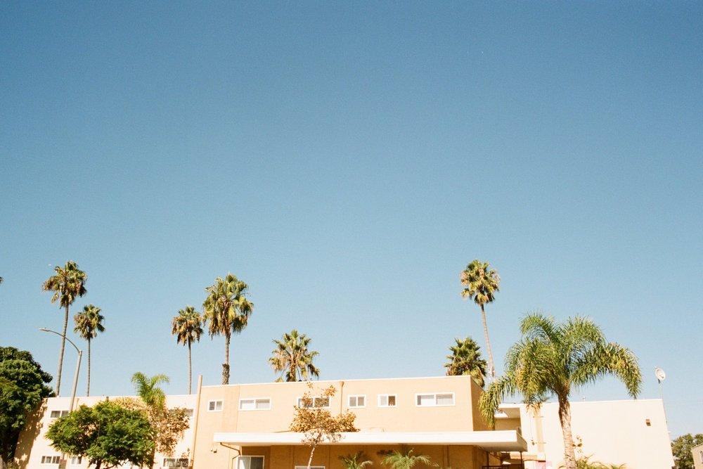 Venice Beach 35 mm Los Angeles California Rachel Hanon Photography 1