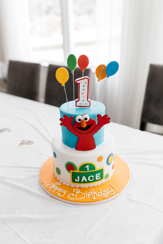 Jace's First Birthday Party - Long Island, NY - Rachel Hanon Photography-222.jpg