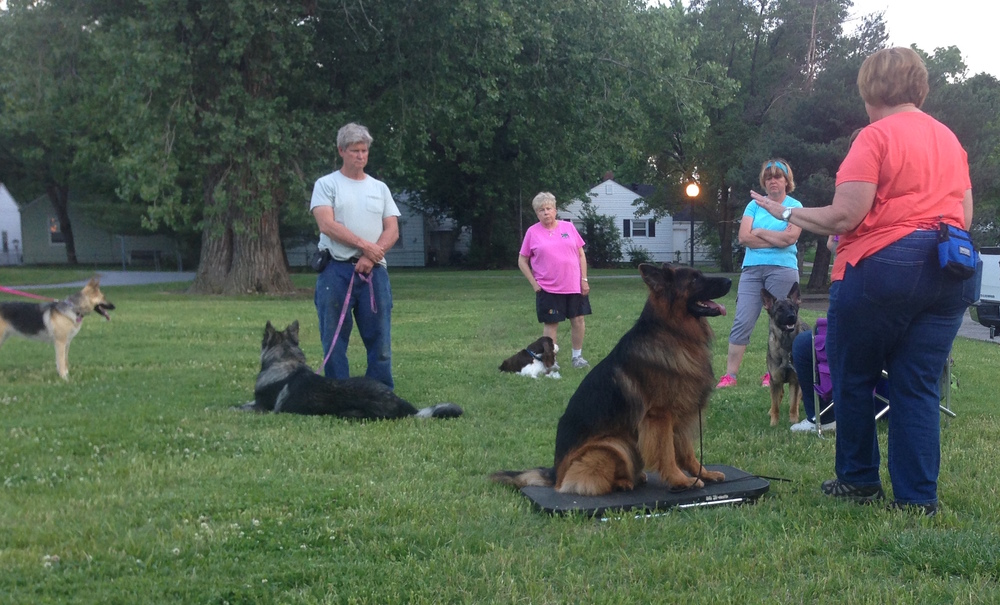 Debbie McHenry, right, and Gero, demonstrate a straight sit on a table.Debbie and Darla Lilly presented the first class in the club's summer series, Fundamentals of Dog Training. Photo by Brad Baker.