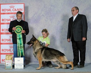 Sel Can Am Grand Champion Edale's Eddison                                (Eddie)