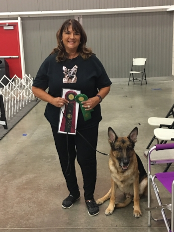 Nancy Kennedy  bragged on  Heinz  for earning his CD (Companion Dog - Obedience title) at the Nationals.