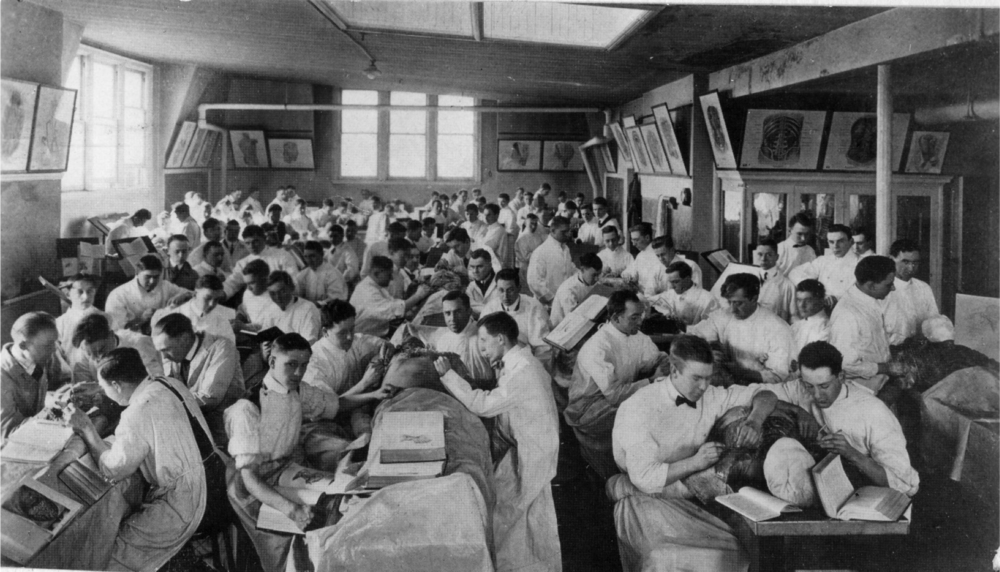 Anatomy Lab at the Detroit College of Medicine in 1900.png