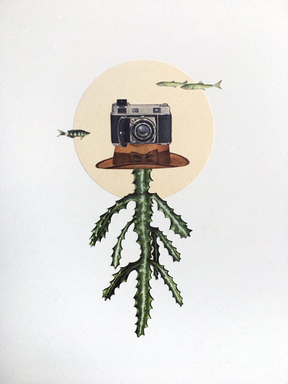 Euphorbian