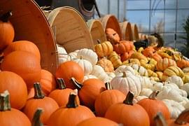 gourds-949112__180