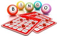 bingo-small.jpg